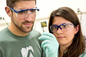 AMC Students in Lab