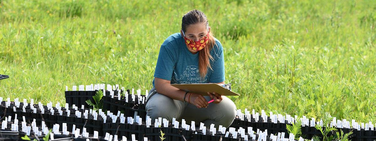 Maria Jose Gomez-Quijano doing field work