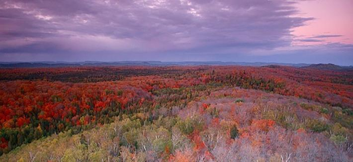 View of Tofte Overlook