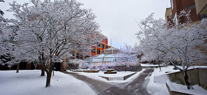 UMD Campus in Winter