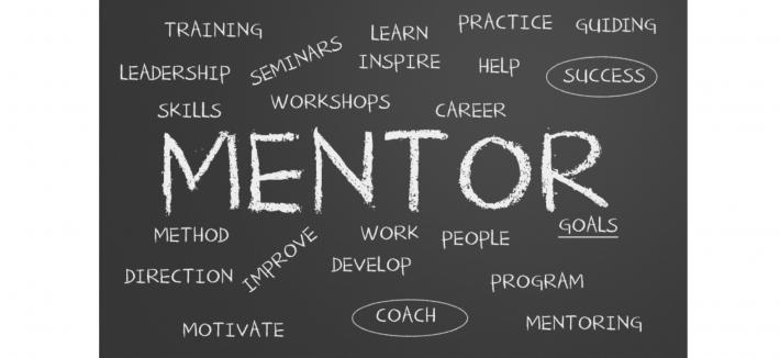 mentoring roles