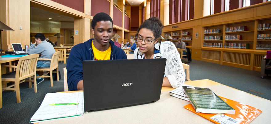 Students Looking at Computer