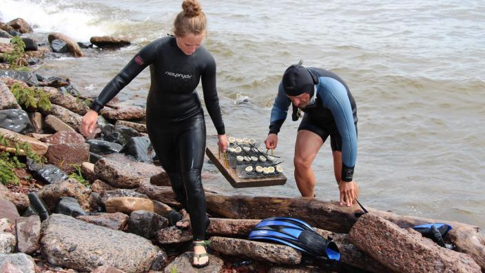 Student & Professor in Lake Superior