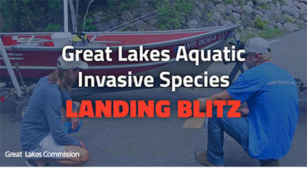 landing blitz