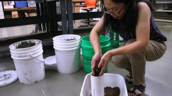 Student working with peat