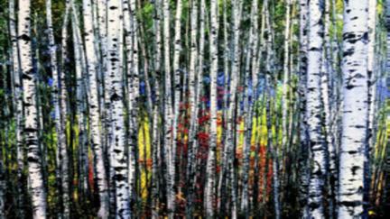 photo of birch tree painting