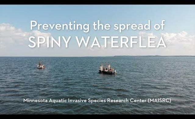 Preventing the spread of spiny waterflea